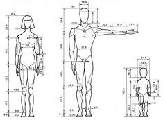 Skeletal proportions - Google 검색