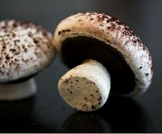 Meringue mushrooms are the traditional decoration for a Buche de Noel (Yule log cake)     For the recipe follow the link below.  http://www.bettyskitchenfare.com/2011_12_01_archive.html
