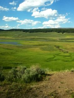 Hayden Valley -- one of the most serene places I know!