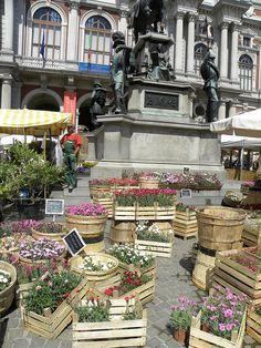 Mercato dei fiori Italian Market, Rome, Spring
