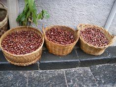 Sagra-delle-castagne