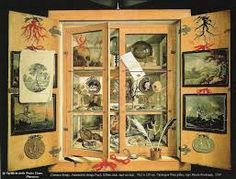 """Résultat de recherche d'images pour """"cabinet de curiosité 17ème siècle"""""""