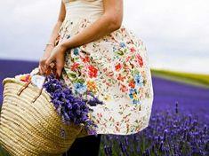 Provenza, lo spettacolo dei campi di Lavanda in fiore | Shabby Chic Mania by Grazia Maiolino