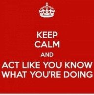 pretty much describes my entire adult life. except for the keeping calm....and the looking like you know what you are doing.