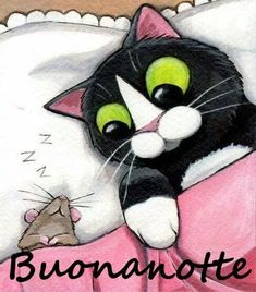 Gatos sleep well, someone like you, i want you, good night, to sleep. Crazy Cat Lady, Crazy Cats, I Love Cats, Cute Cats, Photo Chat, Illustration Art, Illustrations, Here Kitty Kitty, Cat Drawing