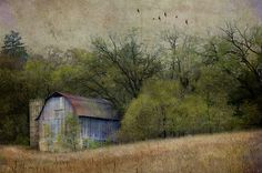 a beautiful image by Jamie Heiden Digitally altered photo.