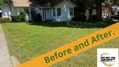 Transform your lawn. Superior Service, Lawn, Grass