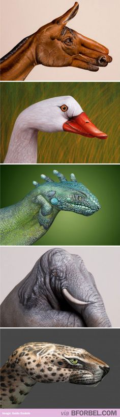 AMAZING animal hand paintings…