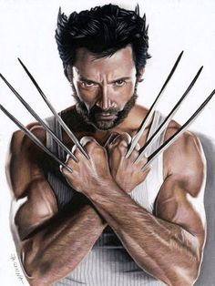 Clip: Zeichnung Hugh Jackman als Wolverine Wolverine Comics, Logan Wolverine, Wolverine Tattoo, Marvel Comics, Wolverine Movie, Hq Marvel, Disney Marvel, Wolverine And Jean Grey, Logan Xmen