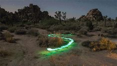 1,000 Light Paintings Form One Beautiful Stop-Motion Animation | The Creators Project