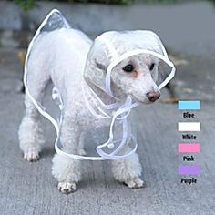 Cool Transparent Rain Jacket for Pets Dogs (assorted colours... – USD $ 11.99