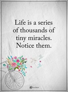 Life is a series of thousands of tiny miracles.  Notice them. - brought to you by http://inspirational.ly