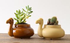 Camel plant pot by cashico ceramic works (Japan)