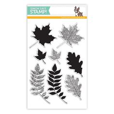 Simon Says Clear Stamps LEAVES AND SCRIBBLES - $14.99