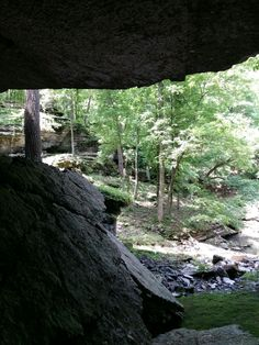Picture from War Eagle Cavern, Arkansas ☺