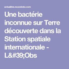 Une bactérie inconnue sur Terre découverte dans la Station spatiale internationale - L'Obs