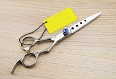 high quality professional SUS440C 5.5 inch cut scissor for hairdressing 440C shears