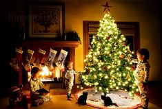 Your Toddler And Your Tree - If you celebrate Christmas in your home as a holiday tradition, you may be concerned about your toddler disturbing the Christmas tree and potentially injuring themselves in addition to damaging som...