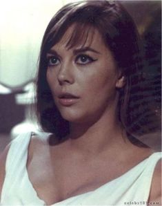 Photo of Natalie in rebel without a cause for fans of Natalie Wood 5139027 Splendour In The Grass, Russian Beauty, Natalie Wood, Female Actresses, Photo On Wood, Hollywood Life, Classic Beauty, Vintage Beauty, Most Beautiful Women