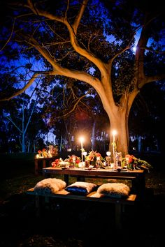 Rustic, woodland tablescape