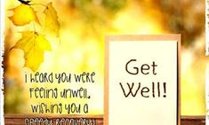 Thoughts and Prayers Get Well Soon, Ecards, Prayers, Greeting Cards, Wellness, Thoughts, Cat, E Cards, Get Well