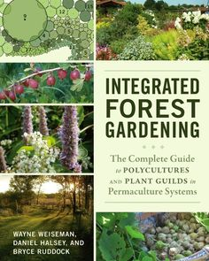 Integrated Forest Gardening by Wayne Weiseman at Chelsea Green Publishing - Permaculture is a movement that is coming into its own, and the concept of creating plant guilds in - Aquaponics System, Aquaponics Plants, Aquaponics Greenhouse, Amazing Gardens, Beautiful Gardens, Beautiful Flowers, Villa Architecture, Organic Horticulture, Olive Garden