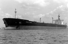 ESSO SABA Bouwjaar 1974, imonummer 7360849, grt 126943 Eigenaar Esso Tankvaart Nederlandse Antillen N.V., Willemstad/NA  http://koopvaardij.blogspot.nl/2016/07/28-juli-1987.html