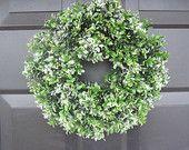 Boxwood Wreath- Christmas 13 Inch Window Wreath