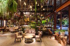 Vivarium es un nuevo restaurante construido dentro de un almacén fuera de servicio, propiedad de Krungthai Tractor Company, operado por Chef's Ministry; y ofrece una fusión de cocina japonesa y tailandesa.   Descripción de los arquitectos.