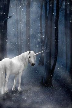 Snowy unicorn day