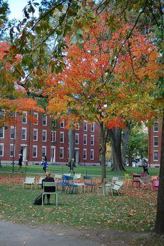 Cambridge in the fall