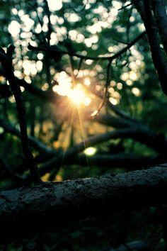 """Todos pasamos por cosas que no parecen tener sentido . Es fácil desanimarse y se preguntan , """" ¿Por qué me pasó esto a mí? """" """" ¿Por qué esta persona me trata mal? """" """" ¿Por qué me despidieron ? """" Pero tenemos que entender , a pesar de que la vida no siempre es justa , Dios es justo. Y , Él promete que todas las cosas ayudan a bien a los que le aman ."""