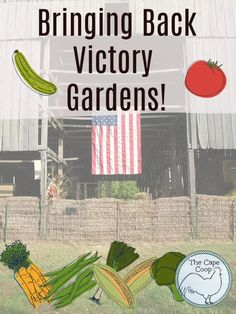 Gardening For Beginners, Gardening Tips, Bring Back, Bring It On, Row Covers, Vegetable Garden Tips, Starting Seeds Indoors, Victory Garden, Square Foot Gardening