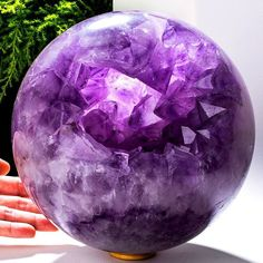 Giant #Amethyst #Geode #Sphere from #Uruguay  This sphere is available for sale. You can DM for price and info.  Visit our store for fine #Minerals!  #stone #rockhound #rock #colorful #colors #geology #geologist #gemstone #Crystals #Crystallover #Crystalporn #Specimen #nature #mothernature #Crystalball #Crystalball #picture  #Amethystlover #energy #chakra #healing #healingstone #Crystalhealing #love #yoga #Sphere #gemporn