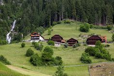 Living in the mountains of the Austrian/Italian border.