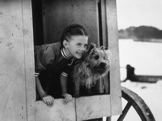 Natalie Wood in The Ghost and Mrs. Muir (1947), with, of course, a Cairn Terrier.