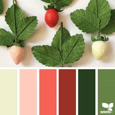 today's inspiration image for { paper strawberries } is by @apetalunfolds ... thank you, Sue, for another incredible #SeedsColor image share!