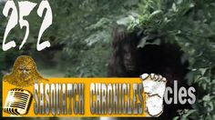 Bigfoot Hotspot Radio - SC EP:252 Hear nothing, see nothing, know nothing