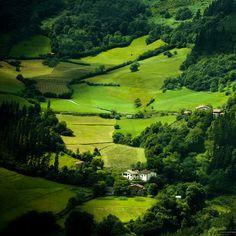 Paisajes verdes.Me gustan mucho las montañas.