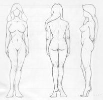 20 best front side back refference images on pinterest drawing