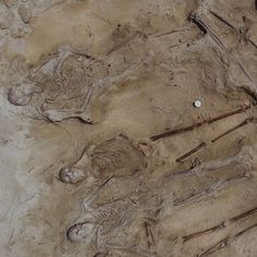 Archaeologists Discover New Mass Grave From Notorious Shipwreck