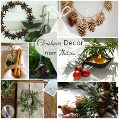 Christmas Decor made from nature - beautiful! From Racheous.com