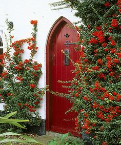 Plants give your front door the finishing touch Pyracantha with red berries can be espalier on a wall or allowed to grow in a tree or shrub form. Cool Doors, Unique Doors, When One Door Closes, Red Cottage, Cottage Door, Windows And Doors, Red Doors, Grand Entrance, Closed Doors