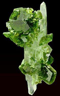 Uvite with Magnesite & Quartz / Mineral Friends Minerals And Gemstones, Rocks And Minerals, The Magic Faraway Tree, Beautiful Rocks, Mineral Stone, Rocks And Gems, Stones And Crystals, Gem Stones, Natural Stones