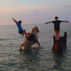 In the Caribbean. On horses. Girls Best Friend, Best Friends, Caribbean, Things To Do, Places To Visit, Wanderlust, Bucket, Creatures, Swimming
