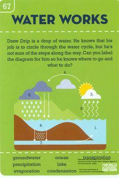Worksheets: Water Works