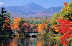 Fall in New England--oh my color!