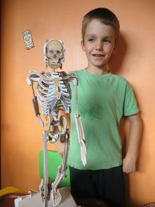 Construire un squelette !
