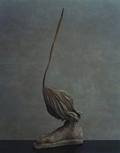 上田義彦写真展「鎮まる」 川瀬敏郎(花人) × 上田義彦(写真家) 東日本大震災 3.11 から間もない頃、花人・川瀬敏郎と写真家・上田義彦のコラボレーションによる「鎮まる」の撮影は行われた。