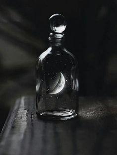 Luna <3 guardo-te num potinho de amor! #cd